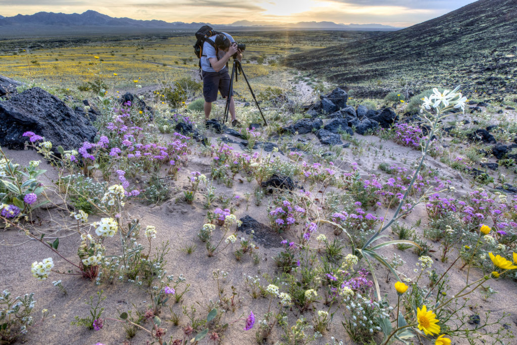 Mojave Trails Anniversary Event at MDLT Campfire Talk and Photo Essay with Kyle Sullivan at Mojave Desert Land Trust Feb 2019