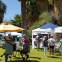 Fantastic fall festivals you won't want to miss in 29 Palms this September!