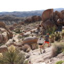 Top 3 reasons to visit 29 Palms this fall