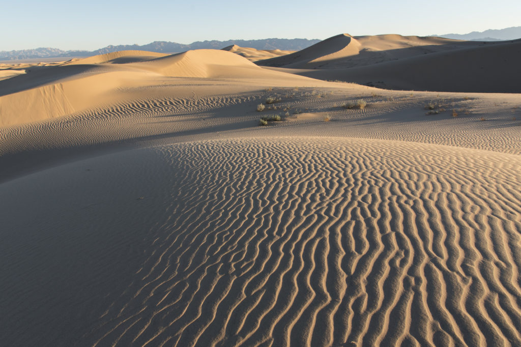 Cadiz Dunes Wilderness, Mojave Trails National Monument