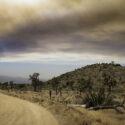 Wildfire Preparedness & Safety Information