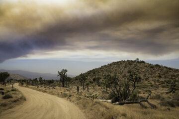 Wildfire Preparedness & Safety Information Twentynine Palms California