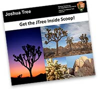 JTNP Inside Scoop